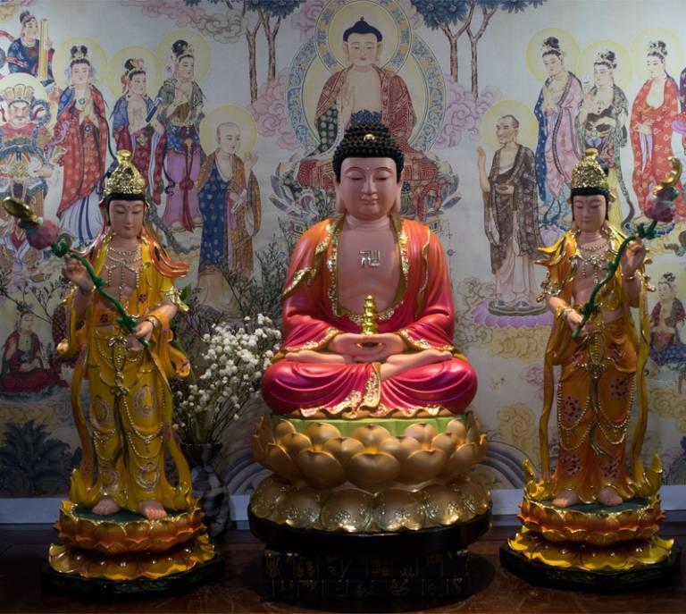 Phật Dược Sư là đấng giác ngộ Toàn giác, có thể giúp chúng sinh thoát khỏi những đau đớn về tâm và thân