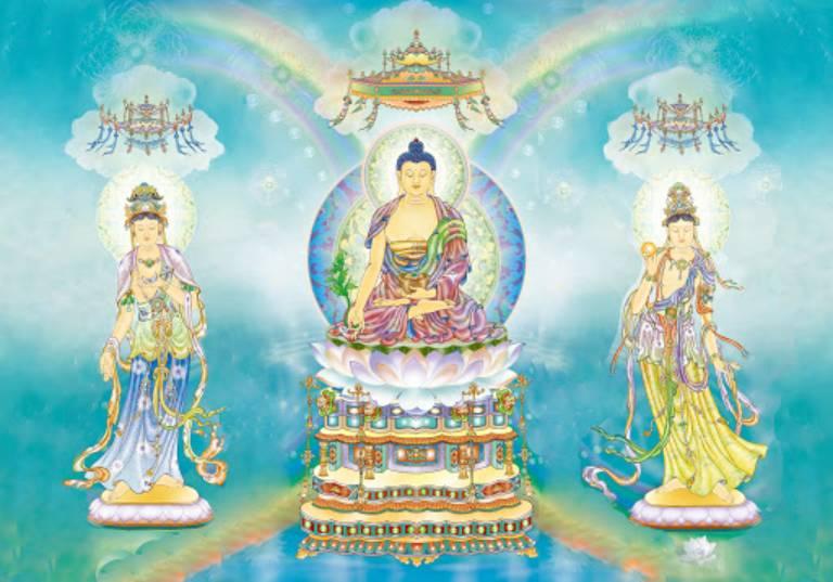 Phật Dược Sư là đấng Y vương Toàn Giác có thể diệt trừ vô lượng tật khổ cho chúng sanh