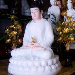 Đức Phật Dược Sư là Tôn chủ của thế giới Tịnh Lưu Ly ở Phương Đông